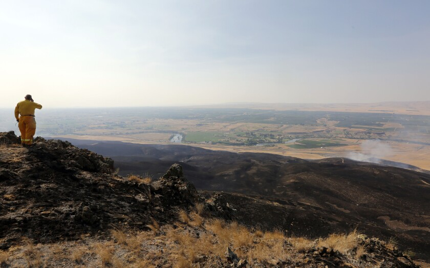 Fire crews responded to a brush fire just east of Prosser, Wash., and just south of Interstate 82.