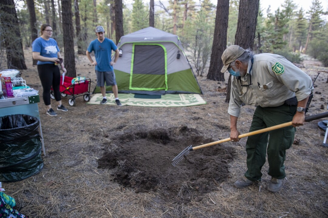 Forest protection officer Chon Bribiescas, right, remove needles as campers Coree, left, and Andrew Dewlaney watch.