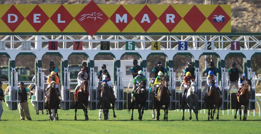 Horses come out of the gates Nov. 9 at the Del Mar Thoroughbred Club.