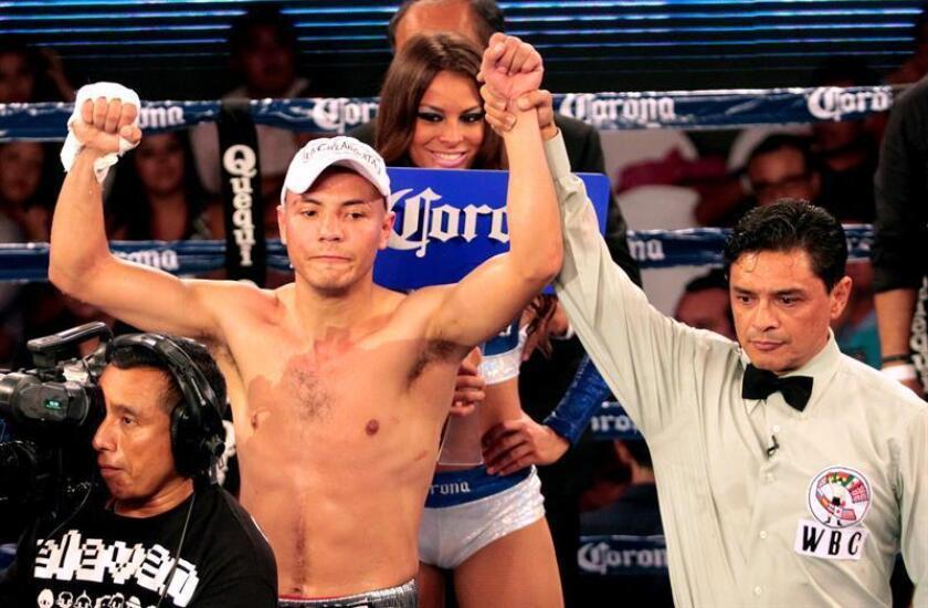 """El anhelo del mexicano Dante """"Crazy"""" Jardón, campeón plata internacional de peso ligero del Consejo Mundial de Boxeo (CMB), no es diferente al de cualquier boxeador profesional, todos quieren alcanzar el título de campeón del mundo y él no es la excepción. EFE/ARCHIVO"""