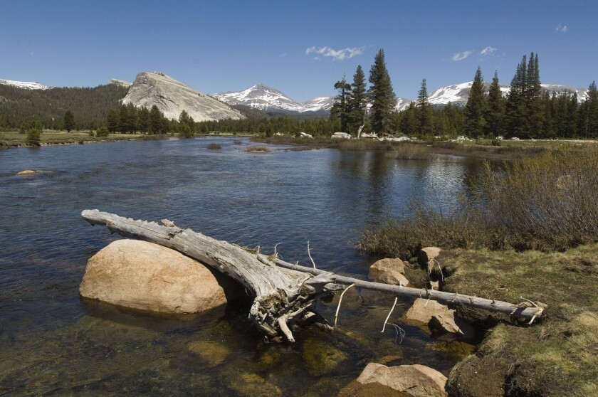 Tuolumne Meadows in Yosemite National Park's high country.