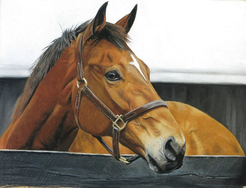 Portrait by Dagmar Galleithner Steiner of Bluesthestandard, who raced at Del Mar. He ran second in the Pirate's Bounty Handicap back in 2004 and third in the Bing Crosby Breeders' Cup Handicap in 2003. At Santa Anita, he ran second in the Breeders' Cup Sprint that same year and has more than $1 million in earnings. Photo by Joe Steiner