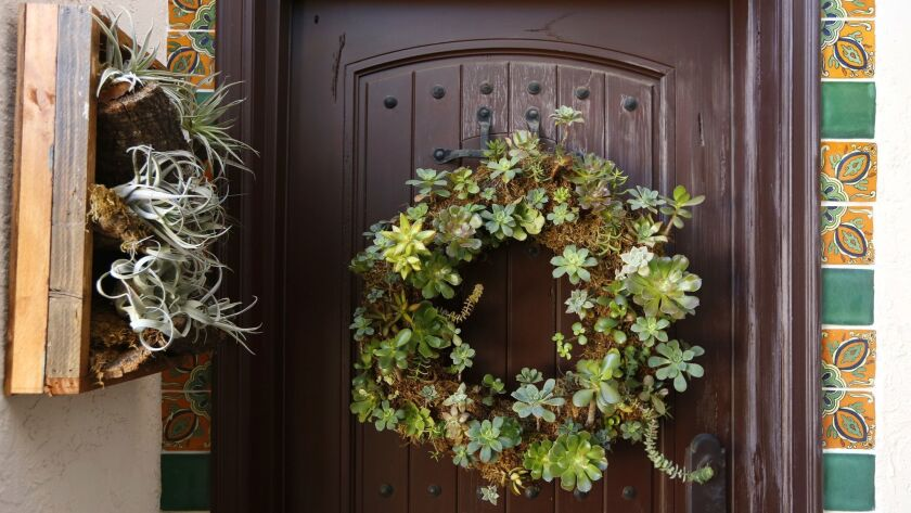 A wreath and a framed planting of succulents at Tom Green's front door.