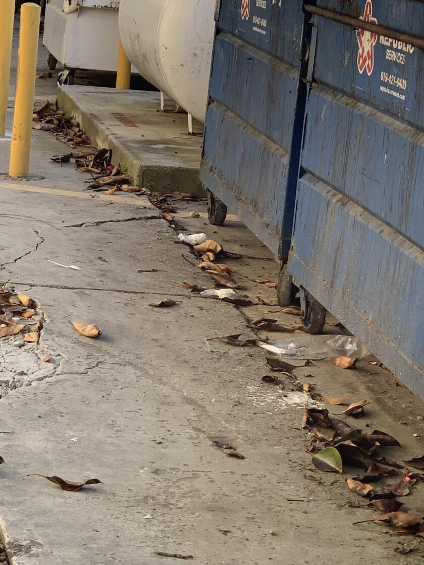 White latex gloves line the ground on April 17 outside nursing center dumpsters.