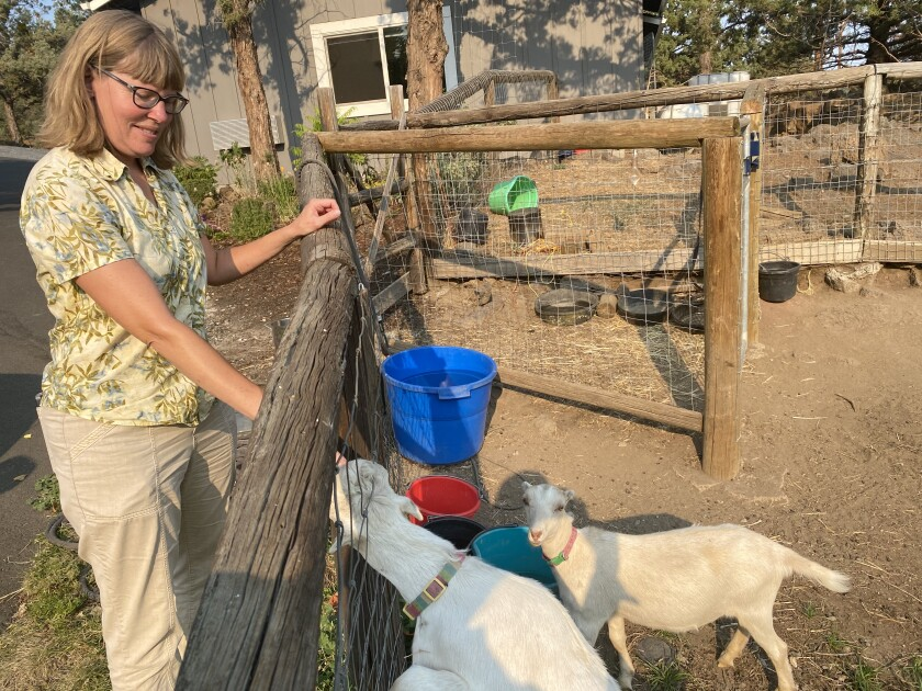 Woman tending goats in Bend, Ore., has decided not to get vaccinated