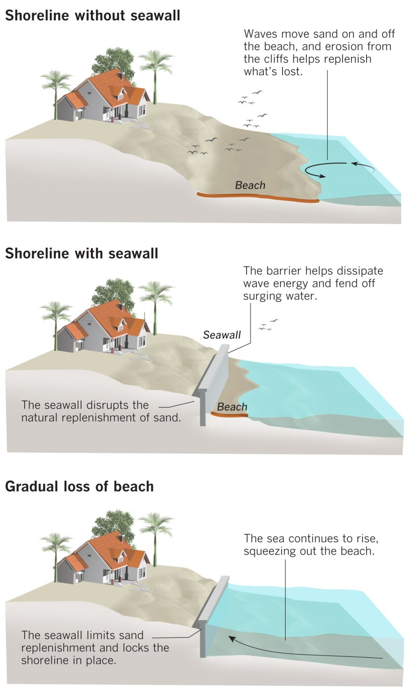 Graphic showing the effect of a seawall on a beach