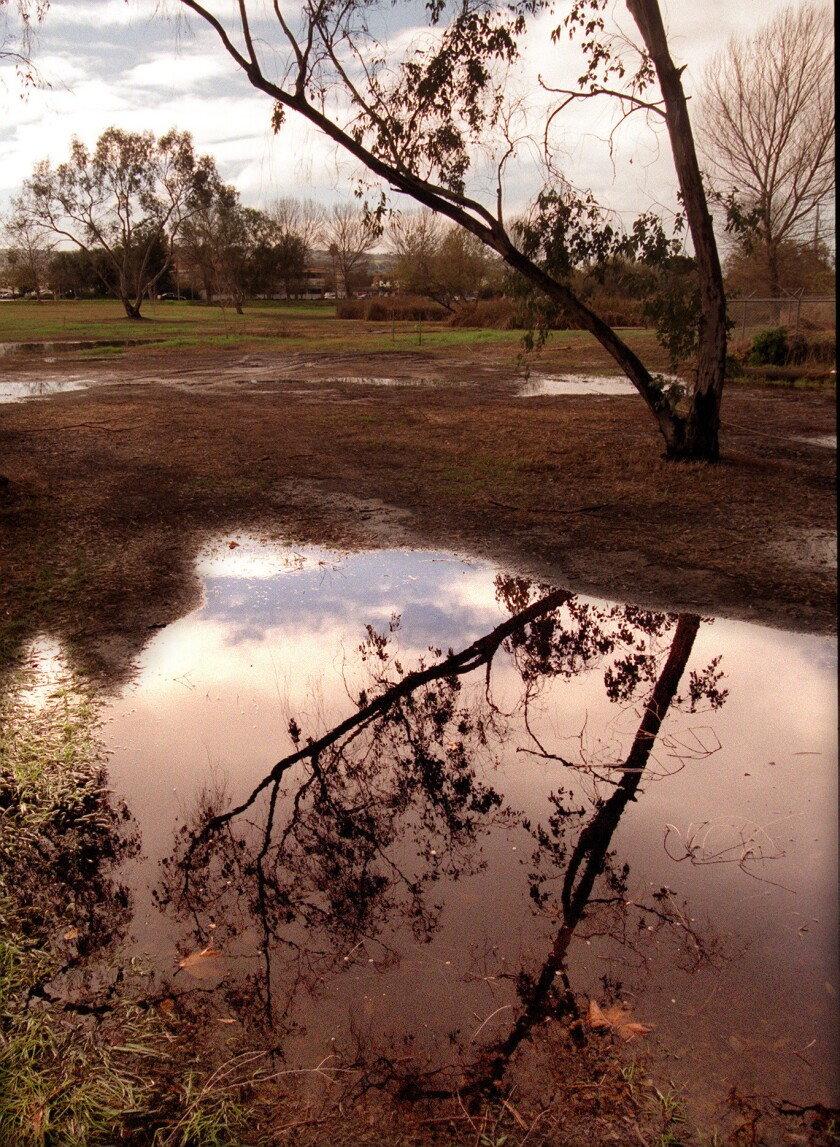 The Madrona Marsh in Torrance will be closed until further notice as a health precaution.