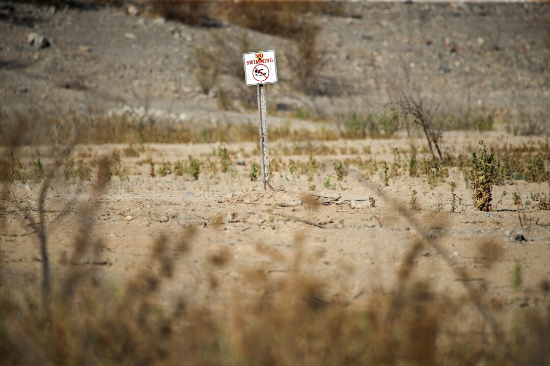 A no swimming sign rises above dry land