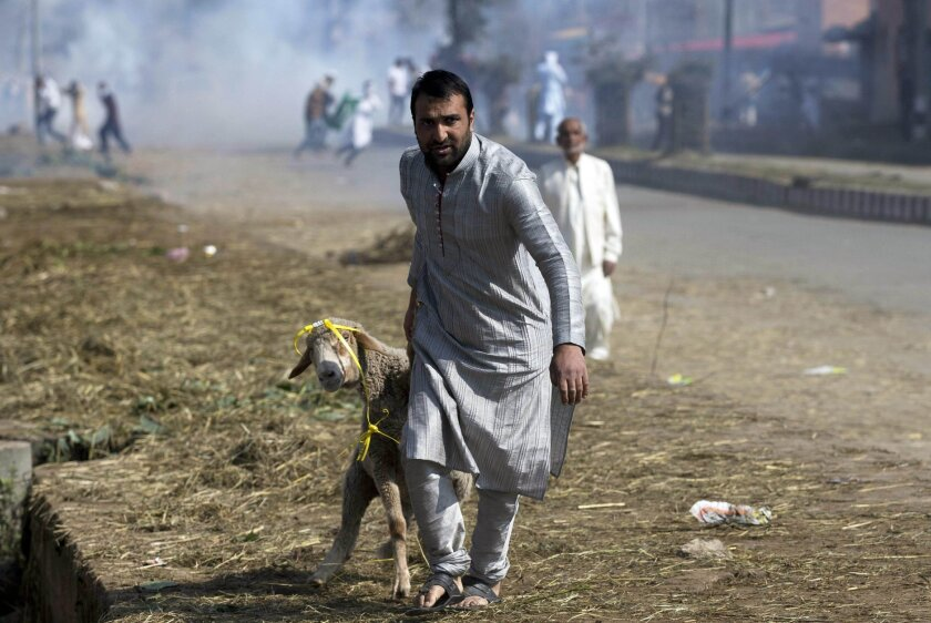 A Kashmiri man leads a goat past protestors after Eid al-Adha prayers in Srinagar, Indian controlled Kashmir, Friday, Sept. 25, 2015. Police fired teargas and rubber bullets to disperse hundreds of Kashmiris protesting a court ruling upholding a colonial-era law banning cow slaughter and the sale of beef in the Indian-controlled portion of Kashmir. (AP Photo/Dar Yasin)