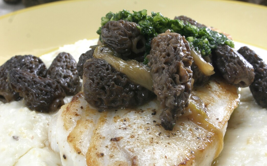 Pan-roasted halibut with grits, morels and spring onions