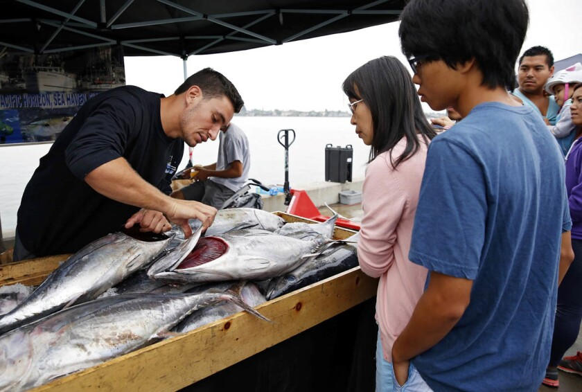 pac-2954180-sd-fo-fish-market-nl-005-m