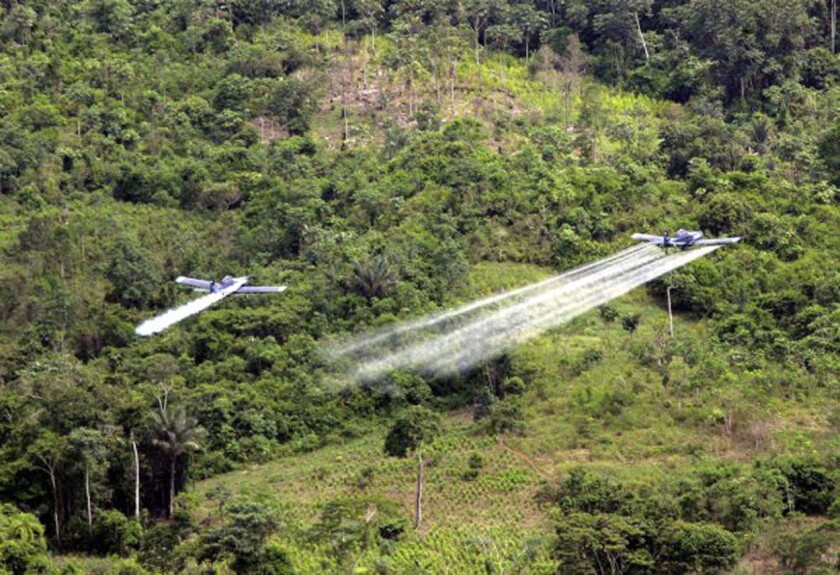 An undated photo provided by the U.S. Embassy in Bogota shows a pair of crop dusters conducting coca eradication in Colombia.