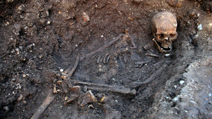 King Richard III's bones were found under a parking lot in Leicester, England.