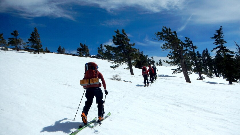 Backcountry skiers moving up snow-covered slopes northwest of Lake Tahoe on a two-day backcountry ski traverse between the Sugar Bowl and Squaw Valley ski resorts.