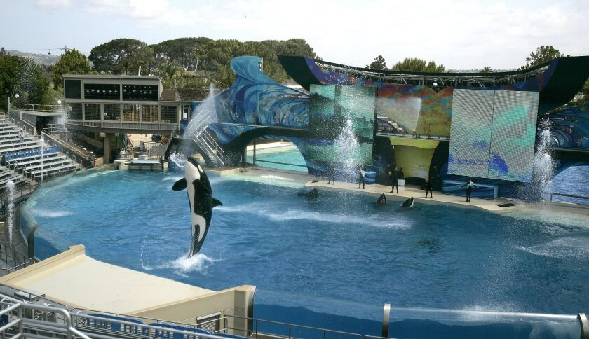 SeaWorld reported few troubles from the outage and still staged its Shamu show.