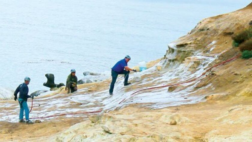 La-Jolla-Cove-Cleaning-1-CleanUp-Copyright-LaJollaLight.com_