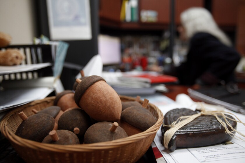 Yurok Chief Judge Abby Abinanti at her desk in Klamath, Calif. The handmade wooden acorns are given out individuals who successfully complete the tribe's wellness court program.