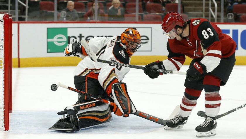 Arizona Coyotes' Conor Garland (83) scores a goal against Anaheim Ducks goaltender Ryan Miller during the second period.