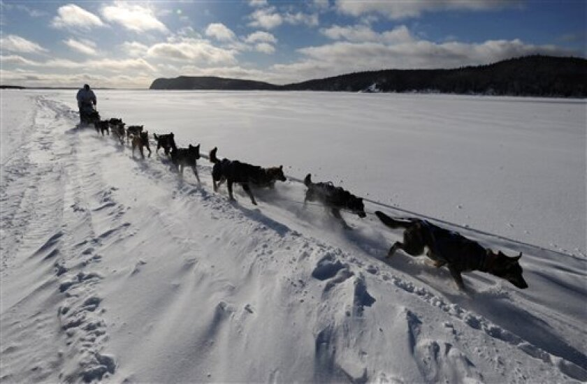Four-time Iditarod champion Martin Buser drives his dog team up the wind-swept Yukon River as he nears Kaltag on Saturday, March 9, 2013. (AP Photo/Anchorage Daily News, Bill Roth)