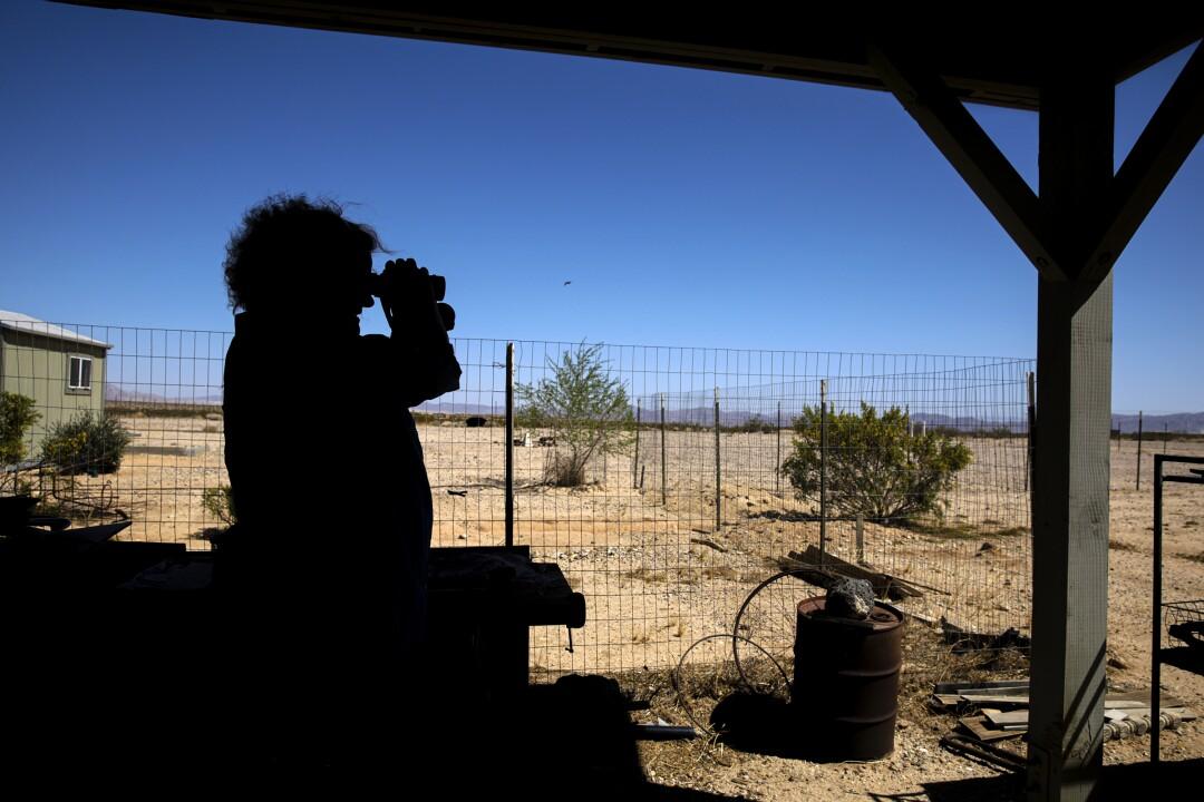 A Joshua Tree resident keeps an eye on illegal pot farms near her home.