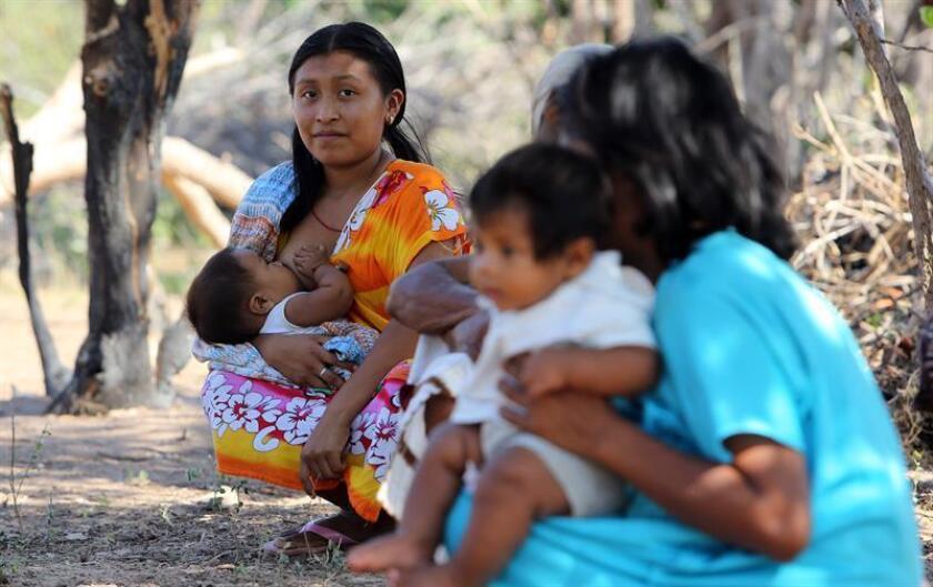 La Comisión Interamericana de Derechos Humanos (CIDH) amplió las medidas cautelares, concedidas a menores y madres gestantes y lactantes wayúu, a los mayores de este grupo indígena situado al norte de Colombia, según el documento al que tuvo acceso hoy Efe. EFE/ARCHIVO