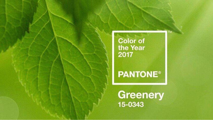 "Pantone's Color of the Year for 2017, Greenery, is described as a ""fresh and zesty yellow-green shade that evokes the first days of spring."""