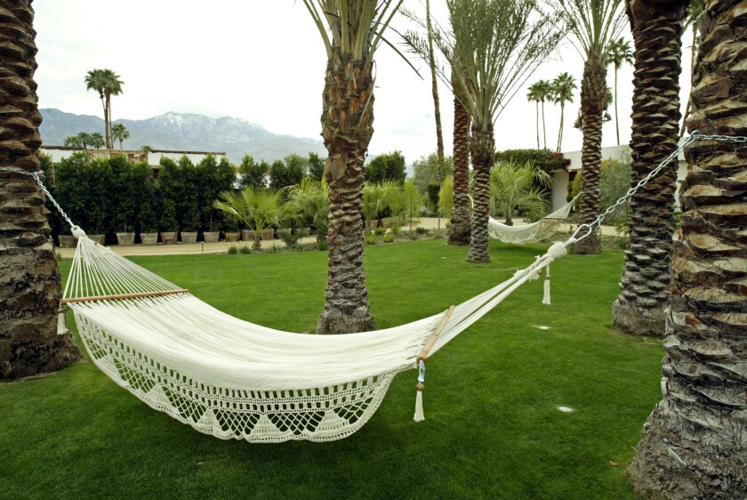 Hammocks are suspended between palm trees at the new Parker Palm Springs hotel.