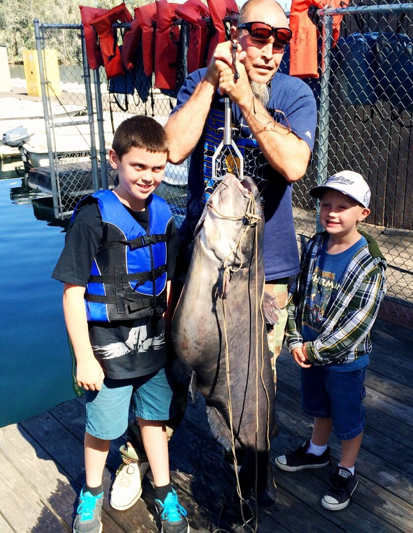 Bob Bowden shows off his 71.3-pound blue catfish he caught while fishing with his grandsons, Patrick and Robert. It's the new lake record for blues at Lake Jennings.