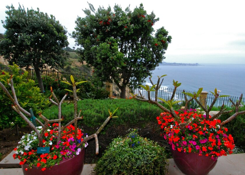 One of the La Jolla gardens from last year's event offered attendees a chance to enjoy coastline views. FILE