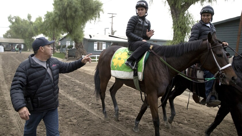 ARCADIA, CA -- SUNDAY, OCTOBER 29: Trainer owner Mick Ruis watches as one of his horses heads out fo