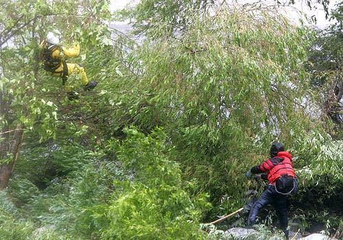 la-rescue2-izoo7anc