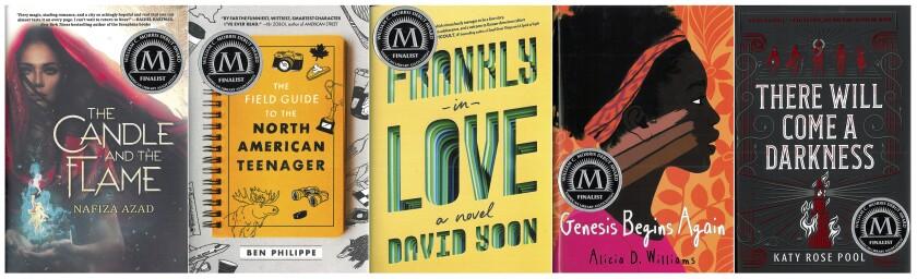 Books - William C. Morris Award