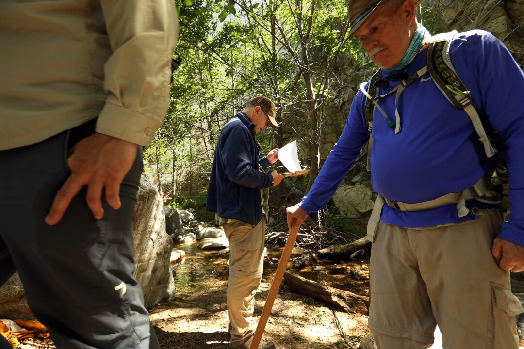 Volunteers conduct a survey of the Arroyo Seco to check for rainbow trout.