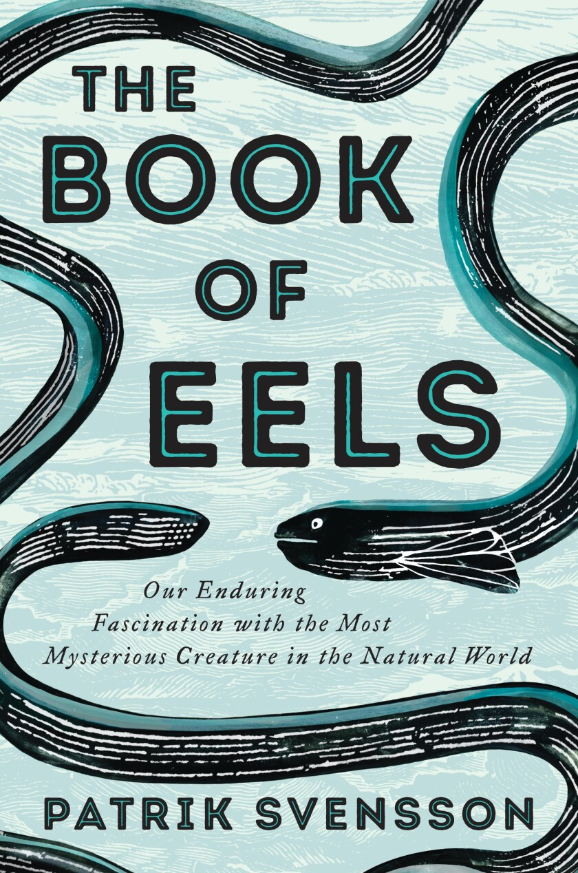 """A book cover for """"The Book of Eels."""""""
