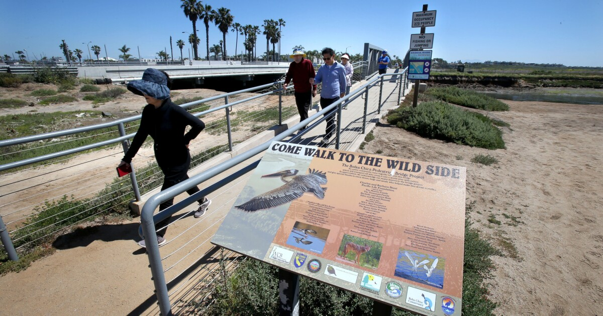 Around Town: Take a walk to the wild side during H.B. wetlands tour