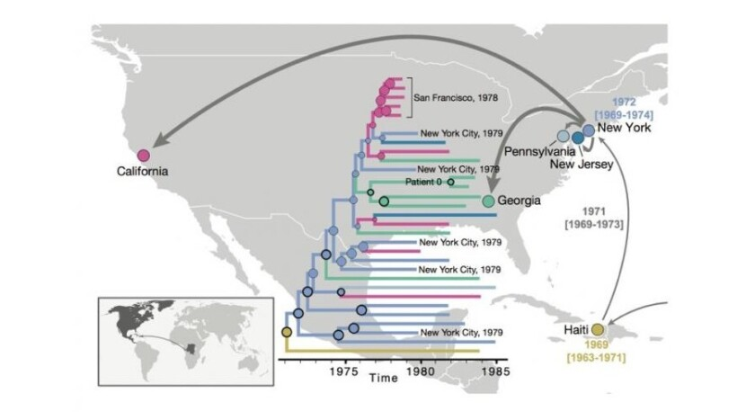After HIV arrived in the Caribbean from Africa, it spread first to New York City and then to different locations in the United States, according to a new study.