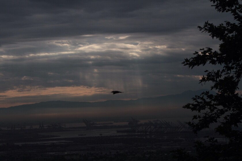 Rays of sunlight filter down through rain clouds Sunday over the Port of Los Angeles.