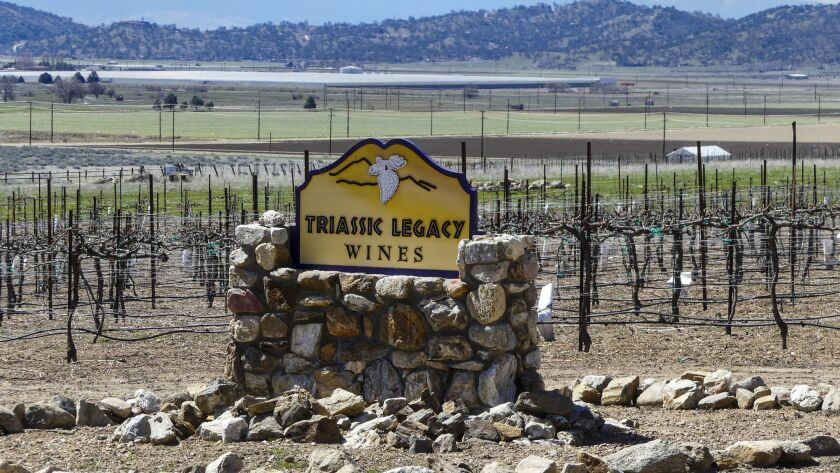 TEHACHAPI, CA - Triassic Legacy Wines vineyards..