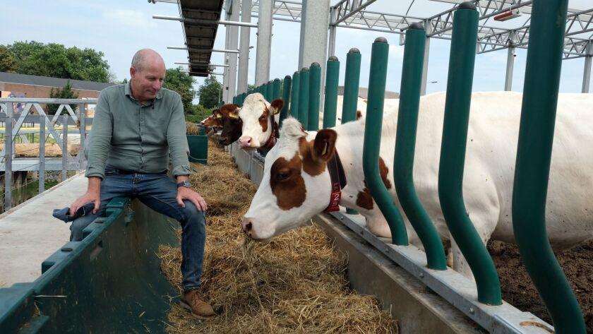 In this photo taken Monday, June 24, 2019, Peter van Wingerden poses with his herd aboard a futurist
