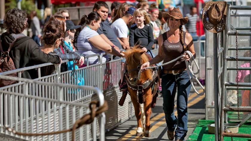 Pony rides are held at Surf City Nights, a street fair and farmer's market organized by the Downtown