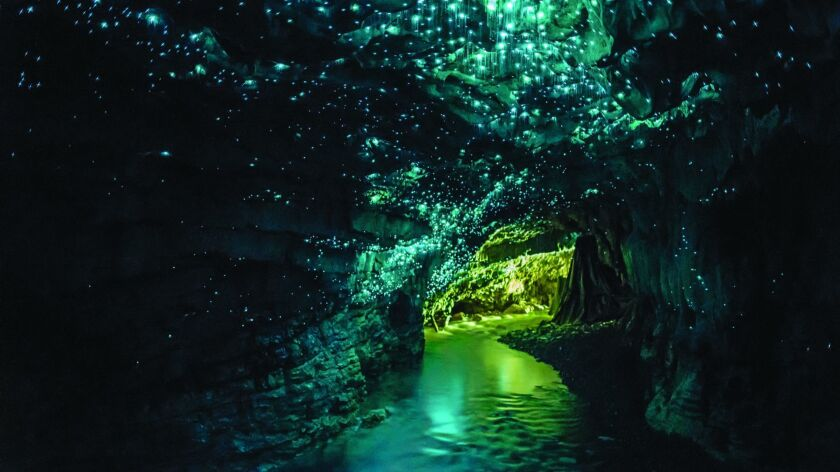 "The Waitomo Glowworm Caves in New Zealand, one of the farflung wonders in ""Atlas Obscura"""