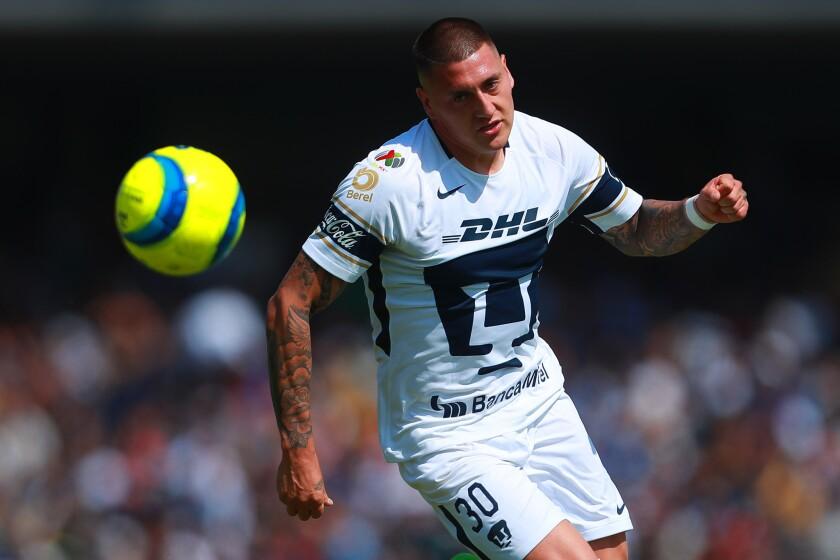 Nicólas Castillo