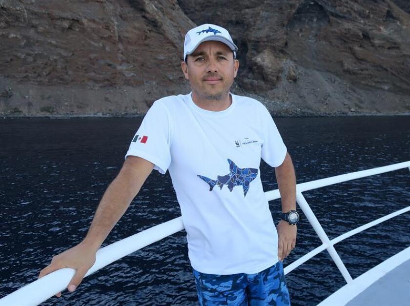 Fotografía del 8 de noviembre de 2018, del biólogo marino Mauricio Hoyos durante una entrevista con Efe rumbo a Isla Guadalupe, en el estado de Baja California (México). EFE
