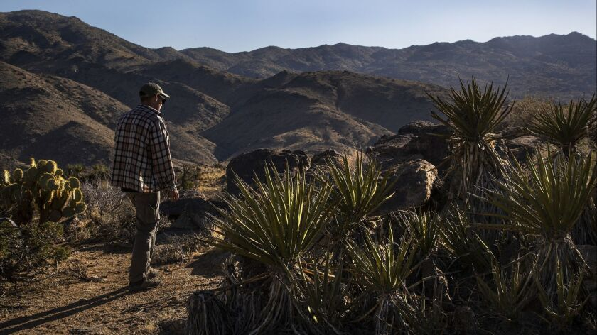 Volunteer rescuer Tiowa Reynolds walks near the spot where he found dehydrated hiker David Sewell in Joshua Tree National Park in April. Sewell, 76, is legally blind.