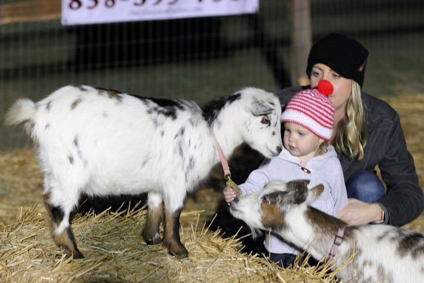 Guests enjoy a visit with goats in the petting zoo at last year's Living Nativity event.