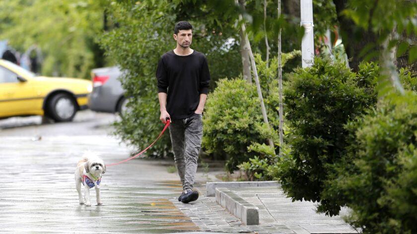 A man walks his dog in Tehran on May 9, 2018.