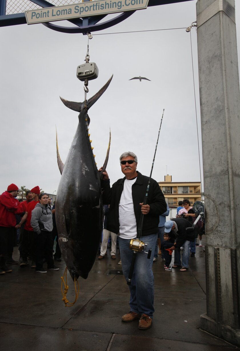 Mike Livingston stands beside the 405.2-pound yellowfin tuna he caught aboard captain Mike Lackey's Vagabond.
