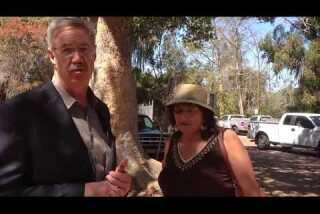 David Rice, Vicki Estrada talk about zoo parking garage