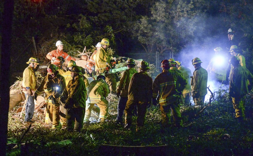 Los Angeles County firefighters work on a large eucalyptus tree that fell on a wedding party in 2016 in Whittier.