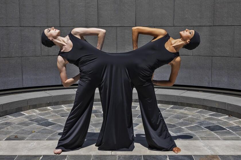 Luminario Ballet Inscape